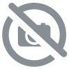 Horse Breed et Pascal Maltret